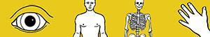 Ζωγραφική Ανθρώπινο σώμα ζωγραφιές
